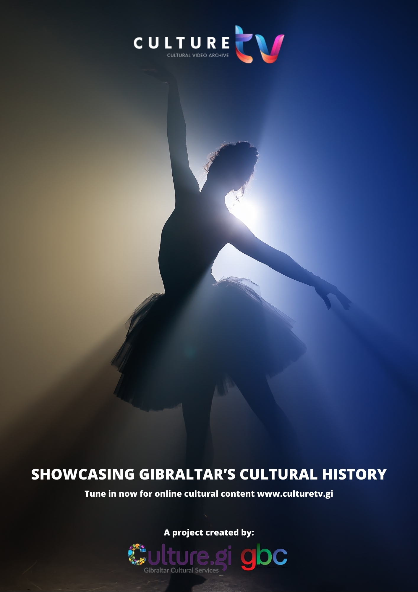 Culture TV Poster Image